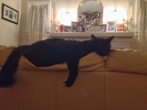 NellNells lounging